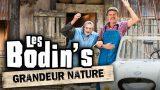 Bodin's