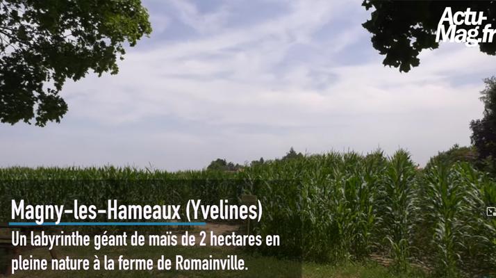 Yvelines. (Vidéo) On a testé le labyrinthe de maïs géant à la ferme de Romainville