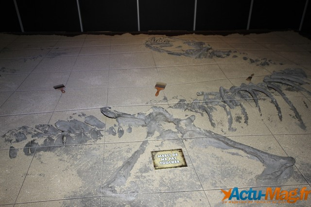 L'ere des dinosaures actu-mag (1)