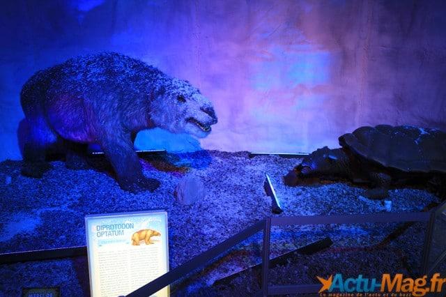 L'ere des dinosaures actu-mag (13)
