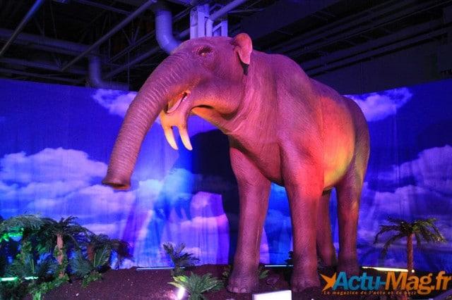 L'ere des dinosaures actu-mag (14)