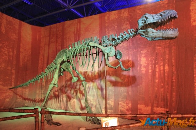 L'ere des dinosaures actu-mag (20)