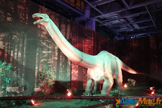 L'ere des dinosaures actu-mag (23)
