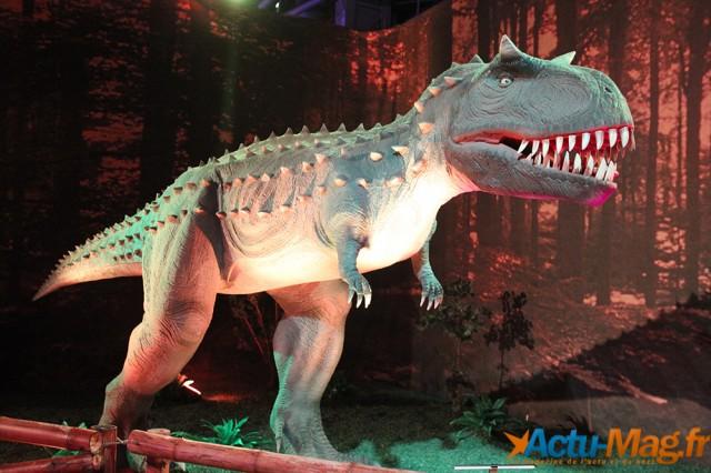L'ere des dinosaures actu-mag (24)