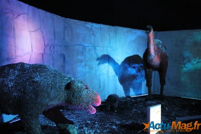 L'ere des dinosaures actu-mag (4)