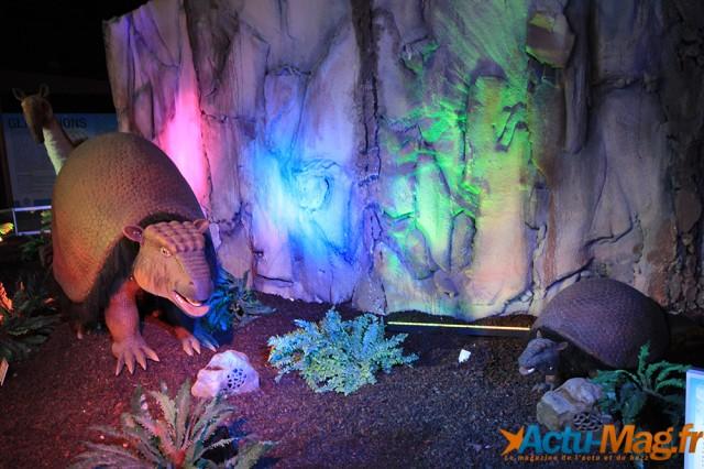 L'ere des dinosaures actu-mag (6)