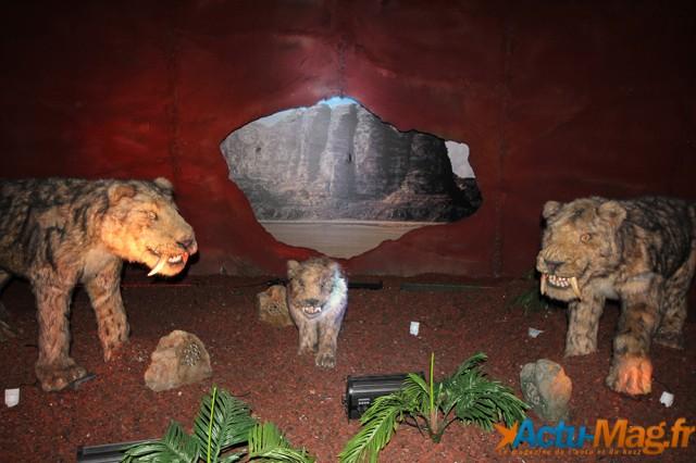 L'ere des dinosaures actu-mag (8)