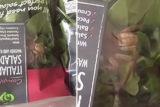 Une araignée géante découverte dans un paquet de salade en Australie / Capture Facebook