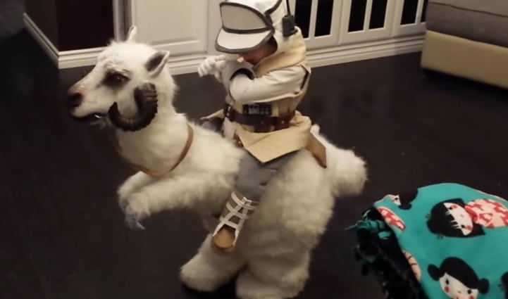 Le costume insolite créer par des parents pour Halloween / Capture Youtube